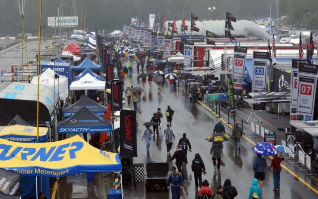 Very wet paddock.  [Jack Webster Photo]