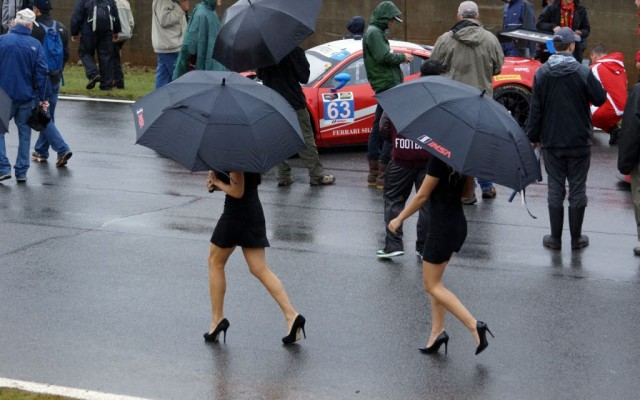 Grid girls.  [Jack Webster Photo]